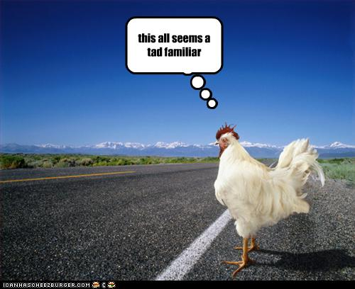 Funny Chicken: Outside Perception