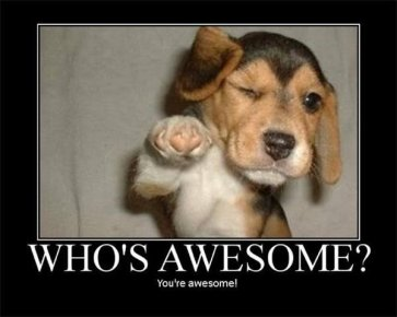 Image result for who's awesome you are