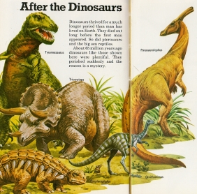 Image result for dinosaur time book